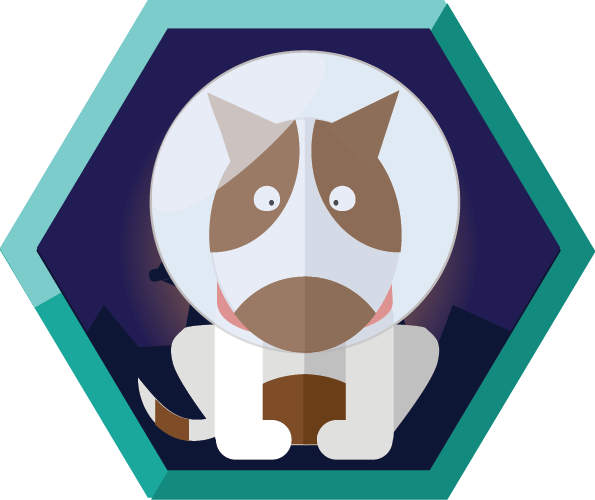 Badge Course 1